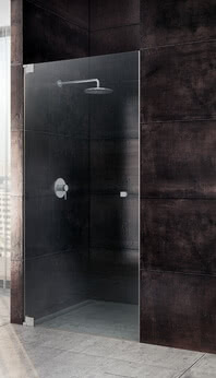 Omega shower niche model