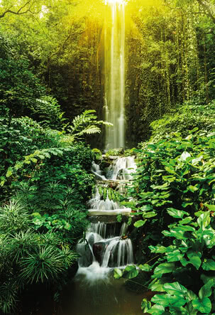Tropischer Wasserfall | 4004
