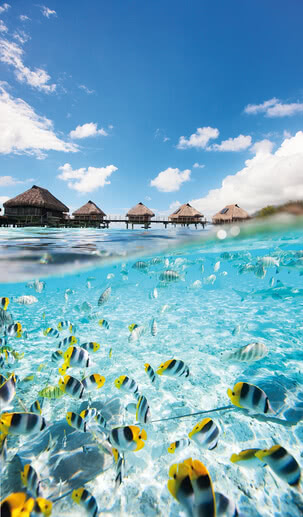 Water bungalows | 4008