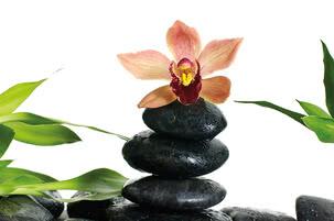 Zen Steine mit Orchidee | 4028