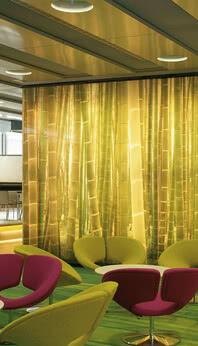 SPRINZ TWSPremiumLED Bambus gelb print.jpg