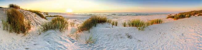 Coastal dunes | 0516