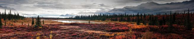 Alaskan landscape | 0453